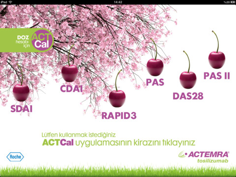 ActCal for iPad