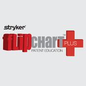 FlipChart Plus