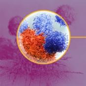 AZ Immune Related AE Management for iPad