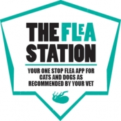The Flea Station for iPad
