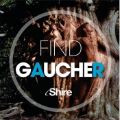 Find Gaucher for iPad