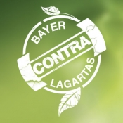 Bayer Contra Lagartas for iPad