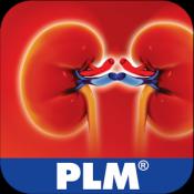 PLM Urología Tableta