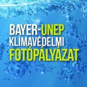 Bayer Virtualis Kiallitas